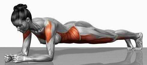 Pilates -Plank Exercise - Hold position for 30 seconds to 1 minute or longer.